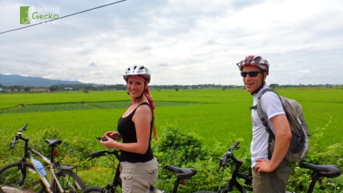 Biking by the rice paddies